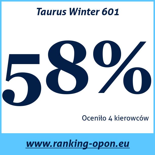 Test pneumatik Taurus Winter 601